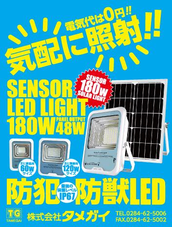 ソーラーLEDライト(人感センサータイプ)