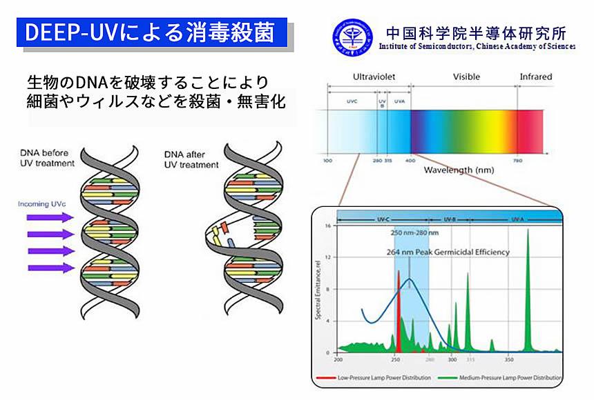 ポータブルUV-C除菌ライトの消毒殺菌効果